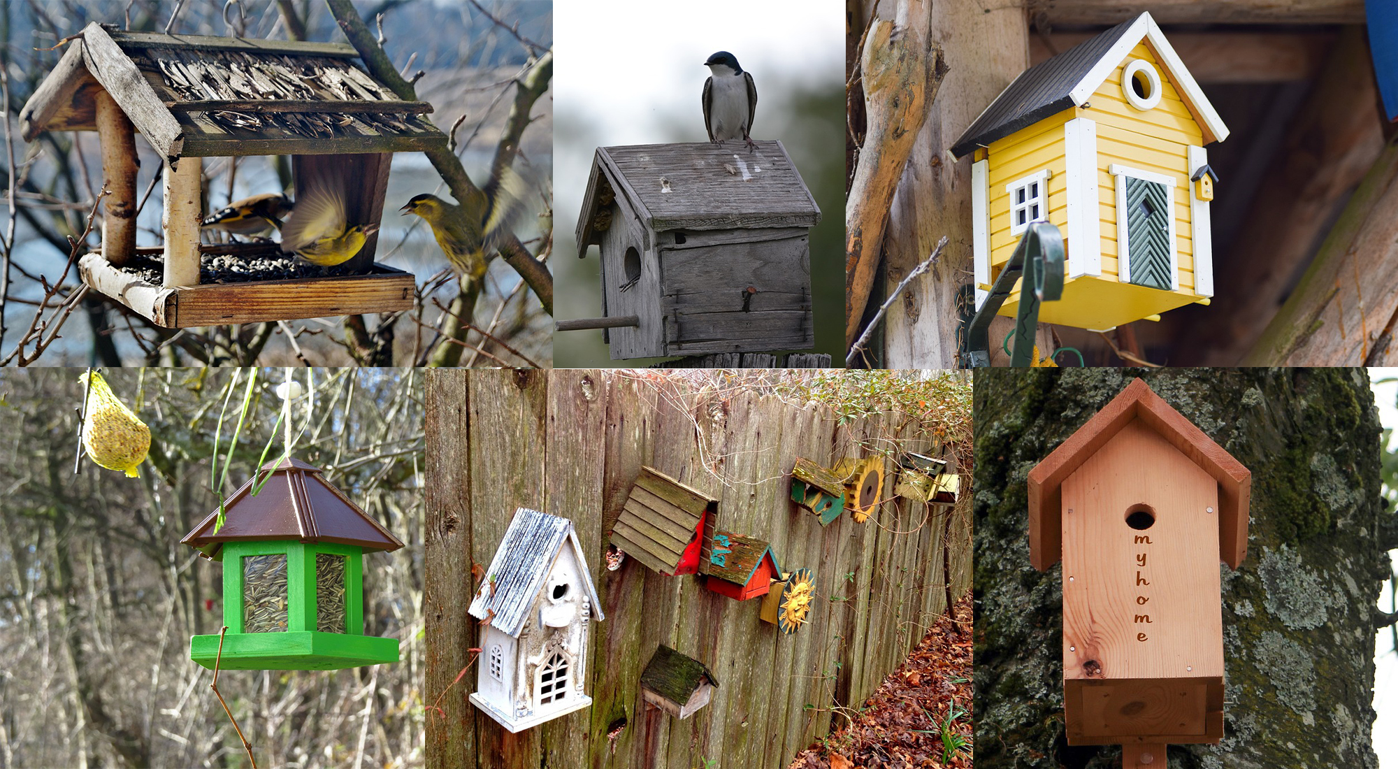 Blog This Is How You Create Your Own Bird House This Is
